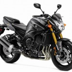All New Yamaha FZ 250 – Official Pictures And Images